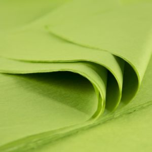 feuille-papier-de-soie-aloé-premium-01