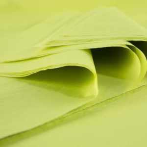 feuille-papier-de-soie-vert-anis-premium-01