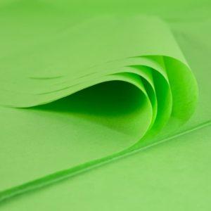 feuille-papier-de-soie-vert-prairie-premium-01