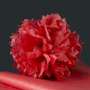 feuille-papier-de-soie-imprime-gemstones-ho-ho-05