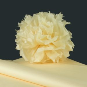 feuille-papier-de-soie-vanille-premium-05