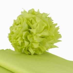 feuille-papier-de-soie-vert-anis-premium-05