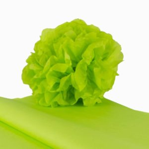 feuille-papier-de-soie-vert-pomme-premium-05