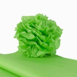 feuille-papier-de-soie-vert-prairie-premium-05